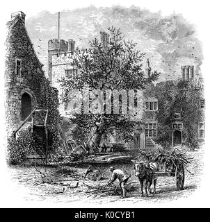 1870: Gathering wood at Penshurst Place built in 1341, is a historic building near Tonbridge, Kent, England. It - Stock Photo