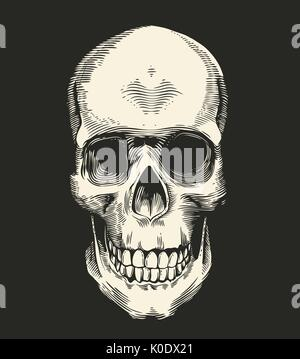 Human skull drawn in retro etching style isolated on black background, front view. Concept of horror and evil. Monochrome - Stock Photo