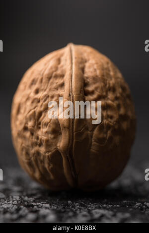 A beautiful large walnut in a shell on a black background. Macro. Fresh Harvest. Walnuts on a black surface. - Stock Photo