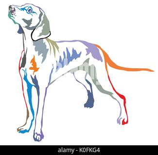 Colorful decorative portrait of standing in profile Weimaraner, vector isolated illustration on white background - Stock Photo