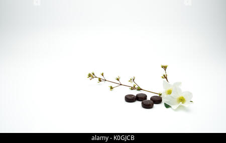 Herbal medicine lozenges for relief cough put near white flower and branch on white background with copy space. - Stock Photo