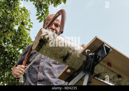 Mature man with mustache holding a saw in hand. Sawing logs, harvesting firewood - Stock Photo