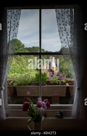 this is a unique view out of the window of the little victorian cottage atop
