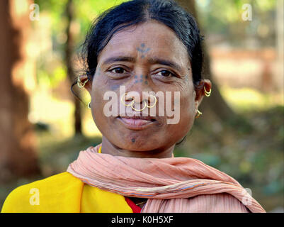 Middle-aged Indian Adivasi market woman with facial tattoos, three golden nose rings and distinctive tribal earrings. - Stock Photo