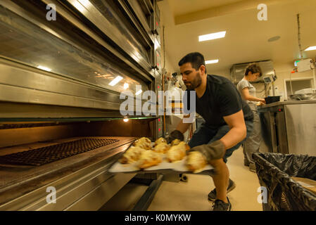 Freshly baked croissants being baked in a bakery in Sydney, Australia in the early morning before opening time - Stock Photo