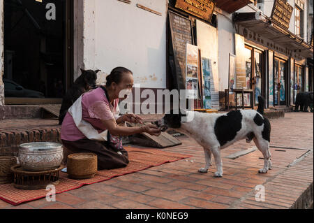 A woman feeds a stray dog with rice left over from the alms giving ceremony in Luang Prabang, Laos, as providing - Stock Photo