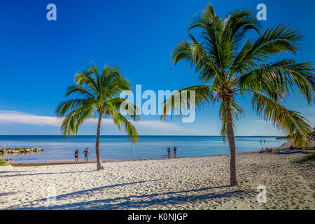 Palm trees and people on sandy Smathers Beach on the Atlantic Ocean in Key West Florida on a blue sky summer day - Stock Photo