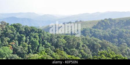 Gavi reserve forest in Kerala. - Stock Photo