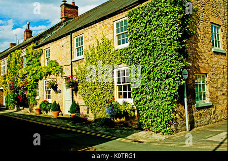 cottage, Thornton Le Dale, North Yorkshire - Stock Photo