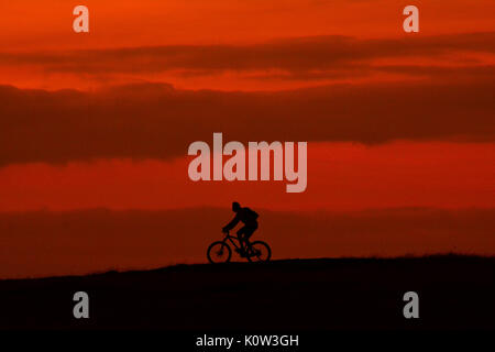 Dunstable Downs, Bedfordshire, UK. 24th Aug, 2017. UK Weather. Beautiful sunset enjoyed by mountain biker on the - Stock Photo
