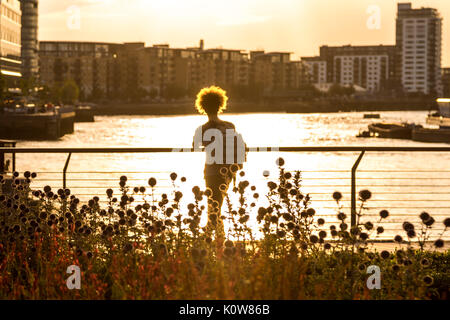 London, UK. 25th August, 2017.UK Weather: Warm evening sunset at Greenwich pier. Credit: Guy Corbishley/Alamy Live - Stock Photo