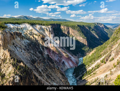 Forested walls of the lower part of the Grand Canyon of the Yellowstone from the South Rim in Yellowstone National - Stock Photo