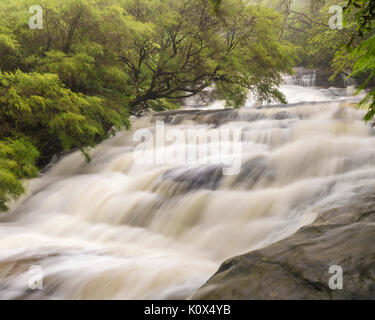 After of heavy rain the water at Leura cascades is running high, Leura, Blue Mountains, NSW, Australia - Stock Photo