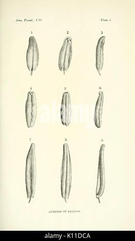 Annals of the Royal Botanic Gardens, Peradeniya BHL2915545