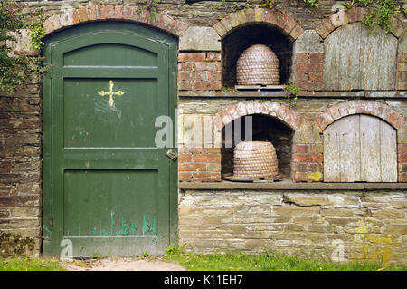 A green painted wooden door in an old walled garden at heligan lost gardens in cornwall. Large pottery urns contained - Stock Photo