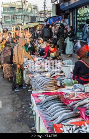 Fresh fish on sale in street, Shillong, Meghalaya, India - Stock Photo
