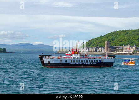 Large black and white vehicular and passenger ferry, Caledonian MacBrayne, at Oban harbour, Scotland with buildings - Stock Photo