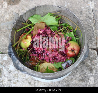 In the plastic bucket there are kitchen organic waste from fruits and vegetables. Top view outdoor shot - Stock Photo