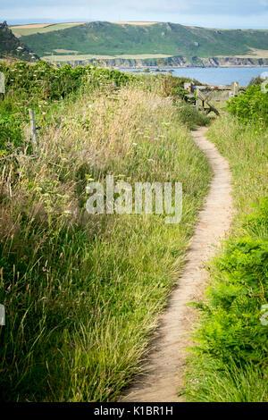 South West Coast Path near East Prawle, Devon - Stock Photo