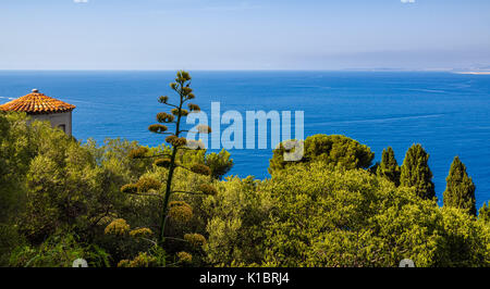 Mediterranean Sea and trees in Nice. Panoramic elevated view of the French Riviera, Cote d'Azur, Alpes Maritimes, - Stock Photo