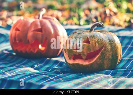 Halloween pumpkins outdoor in garden - Stock Photo