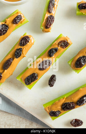 Homemade Ants on a Log Snack with Celery Peanut Butter and Raisins - Stock Photo