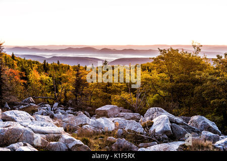 Bear rocks sunrise during autumn with rocky landscape in Dolly Sods, West Virginia with dark trees - Stock Photo