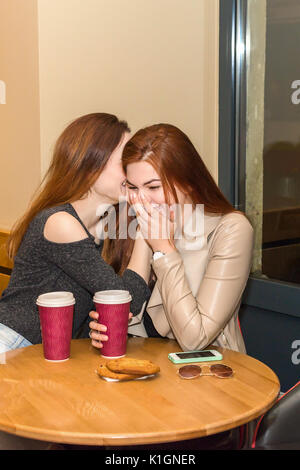 Two beautiful women drinking coffee mug, gossiping and chatting in a cafe bar. Two girls sitting in a cafeteria, - Stock Photo