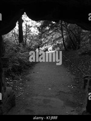 View through bridge underpass of woman walking on forest path in black and white - Stock Photo