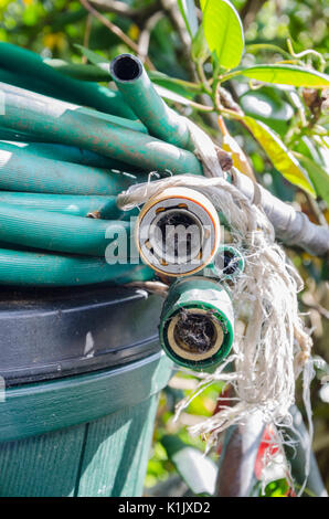 An old hose pipe with tap connectors and a spray nozzle curled up and left on top of a bin in a back garden. - Stock Photo