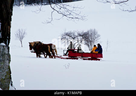 Horse drawn sleigh ride in the snow covered hills of Vermont, USA - Stock Photo