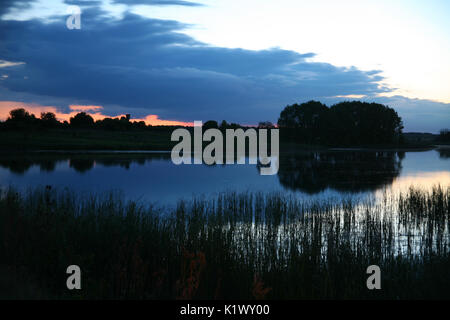 Calm pond surface with wood in nice sunrise with dawn and fog. - Stock Photo