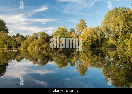 Golden light at Langford Lakes Wiltshire. Langford Lakes nature reserve  Nestled in the Wylye Valley between Salisbury - Stock Photo