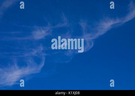 Cirrus clouds fill half the frame of a summertime photo of an otherwise clear sky - Stock Photo