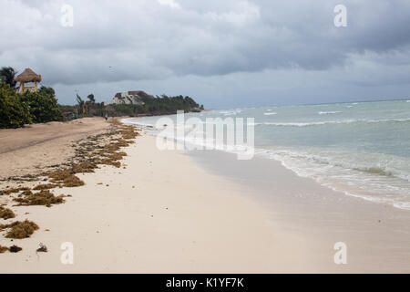 Tropical Caribbean beach with stormy sky as Tropical Storm Harvey passes. - Stock Photo