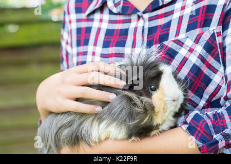 Close Up Of Girl Looking After Pet Guinea Pig - Stock Photo