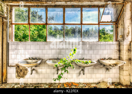 Dilapidated sinks in the washroom of an abandoned asylum - Stock Photo