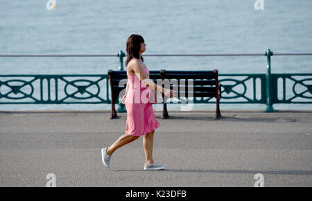Brighton, UK. 28th Aug, 2017. An early morning walker enjoys the beautiful hot sunny weather on Brighton and Hove - Stock Photo