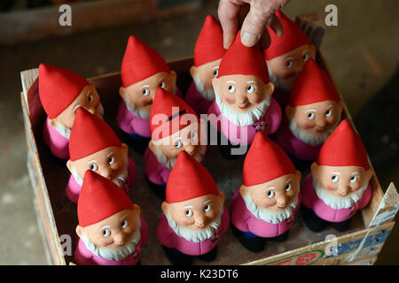 Graefenroda, Germany. 25th Aug, 2017. Garden gnomes, photographed at the garden gnome manufactory in Graefenroda, - Stock Photo