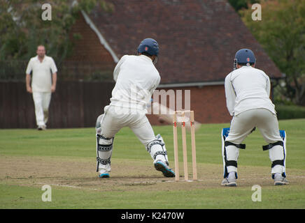 Ball to wicket - Stock Photo