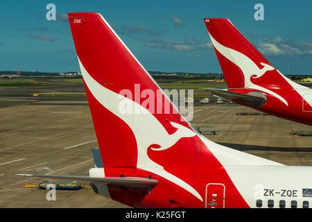 Qantas passenger aircraft tails with distinctive kangaroo logo at Sydney International Airport, New South Wales, - Stock Photo