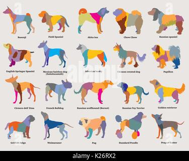 Vector set of colorful mosaic isolated different breeds dogs silhouettes on grey background. Part 3 - Stock Photo