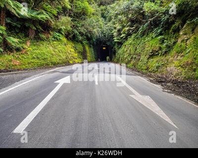 Tunnel, Forgotten World Highway, Taranaki Region, North Island, New Zealand - Stock Photo