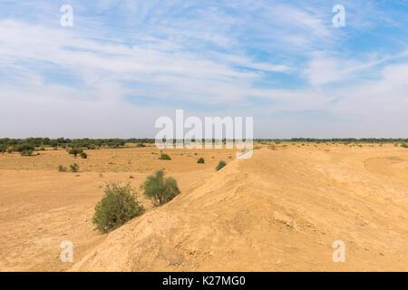 India Rajasthan Thar Desert desert vegetation scenery ...