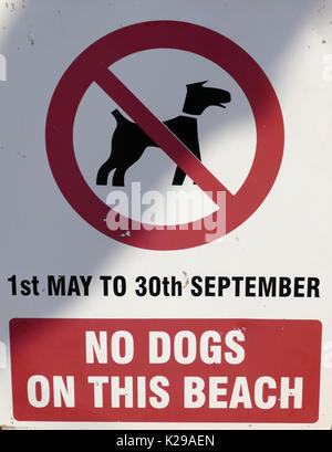 no dogs on beach sign Teignmouth Devon  U.K. - Stock Photo