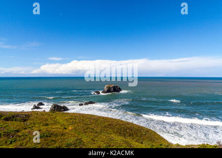 The California North Coast in Sonoma County along scenic Highway 1 at Goat Rock State Beach where the Russian river - Stock Photo