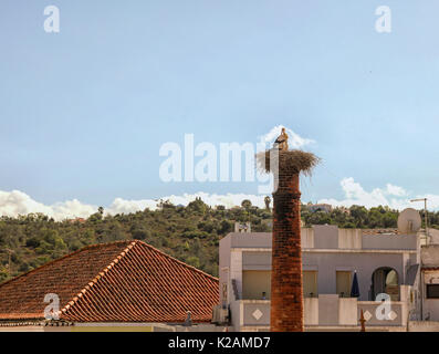 Stork couple on a chimney in mediterranean village - Stock Photo