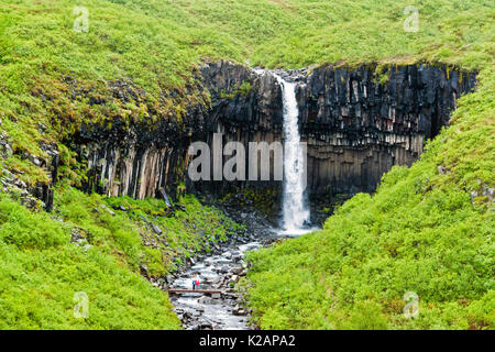 Svartifoss Waterfall in Skaftafell with isolated couple - Iceland