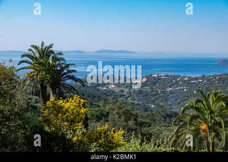 View of the Mediterranean Sea from a hillside near Saint Tropez with palms and distant islands - Stock Photo