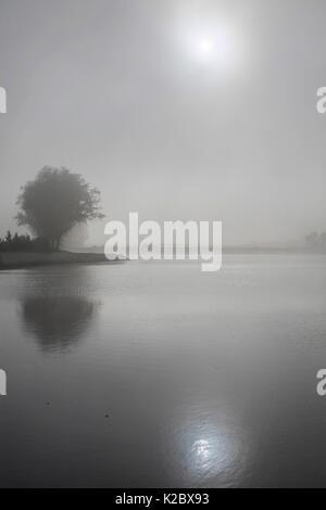 Sun shining through fog, Somme River, near Peronne, Picardy, France, October. - Stock Photo